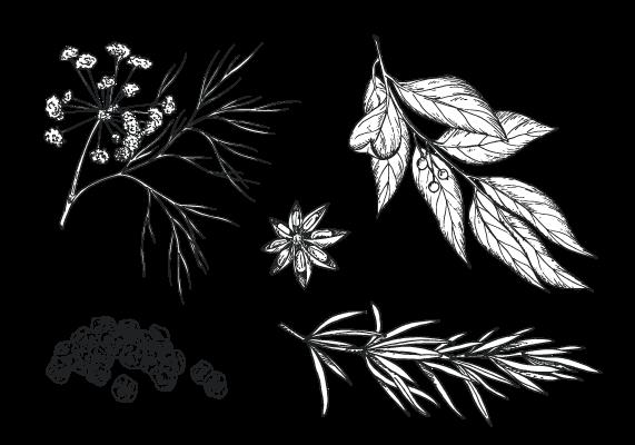 non-alcoholic gin herbs